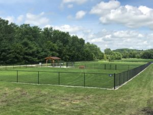 Dog Park fenced in areas